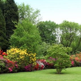 A garden in the UK (Stock photo)